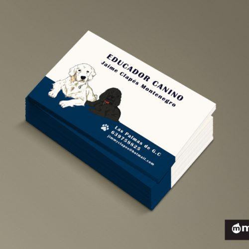 diseño gráfico tarjeta de visita